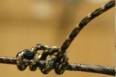 d loop knot