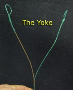 yoke tuning a compound bow