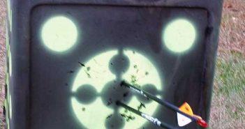 rinehart rhinobrute target