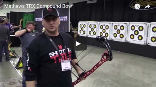 mathews trx compound bow