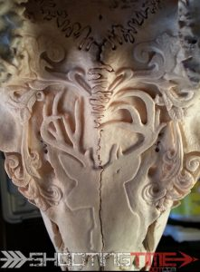 deer skull carving