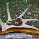 moose antler carving