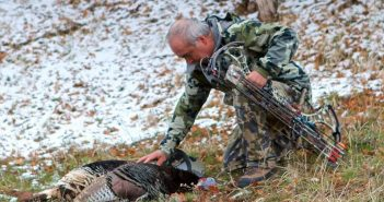 colorado turkey hunting