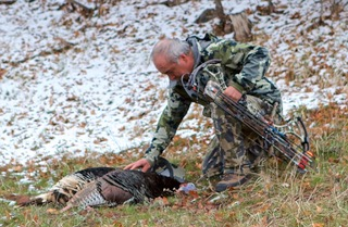colorado turkey kill
