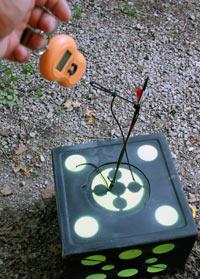 arrow removal